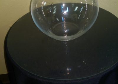 Large Fishbowl $8.00